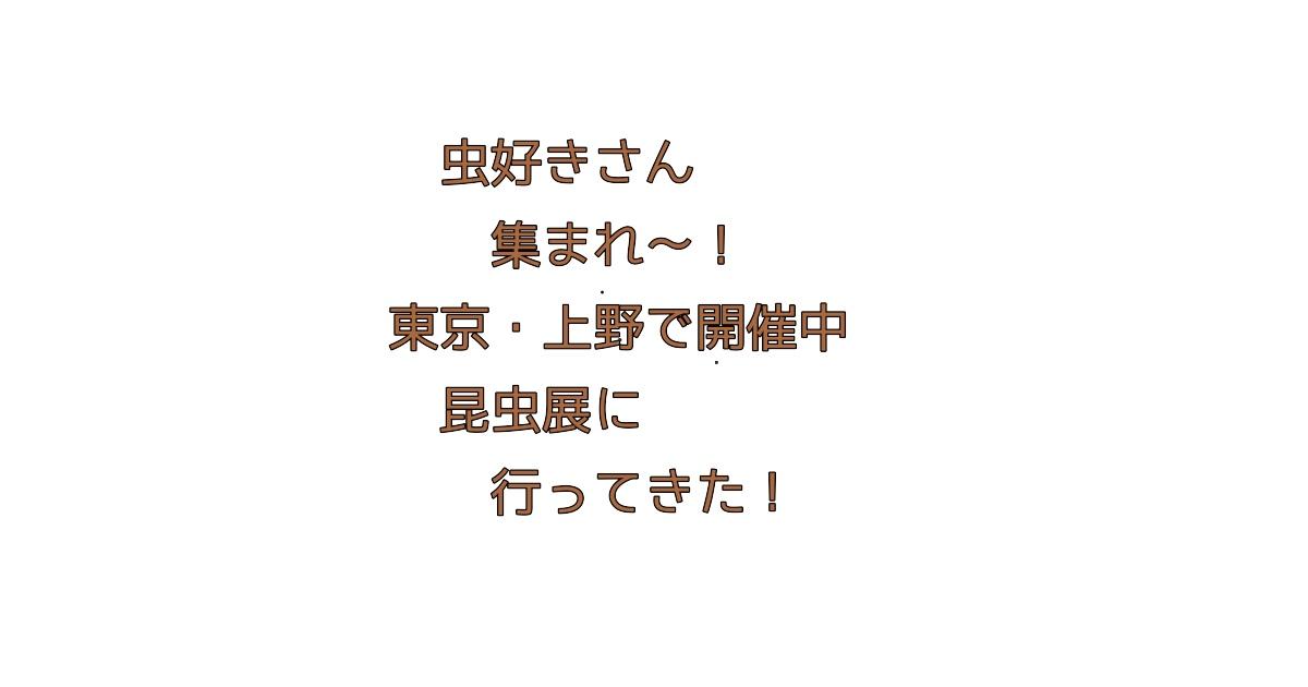 虫好きさん集まれ〜!東京・上野で開催中の昆虫展!
