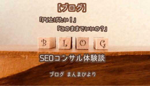 【ブログ】「PV上げたい…」から始まった!SEOコンサル体験談!