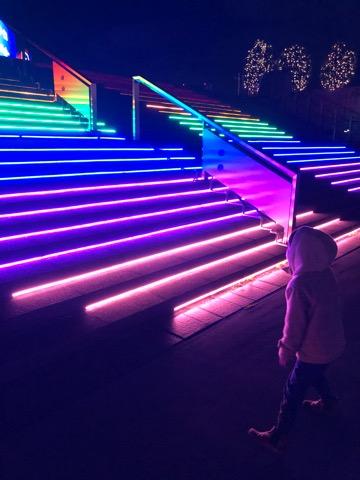 東京メガイルミ 東京都 品川区 大井競馬場 イルミネーション